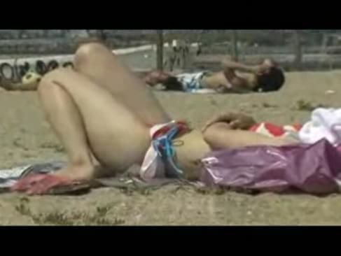 bikini sharked