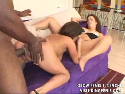Black stallion needs two girls - redtube - free interracial porn videos