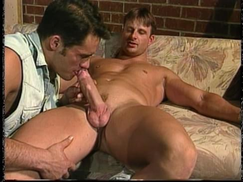 gay licking dick