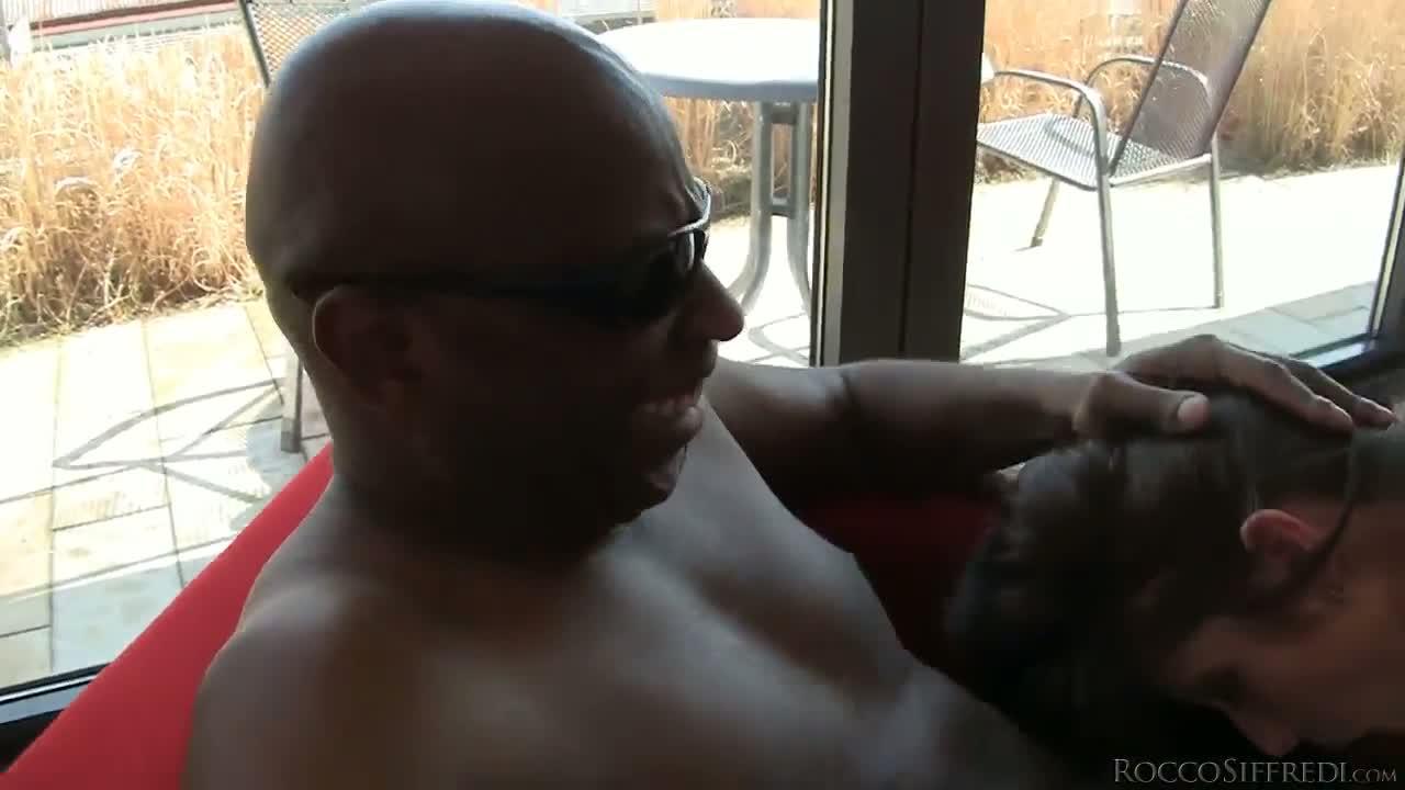 hot car sex gifs
