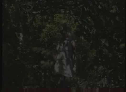 Hakan serbes las perversiones de neron 1997 7