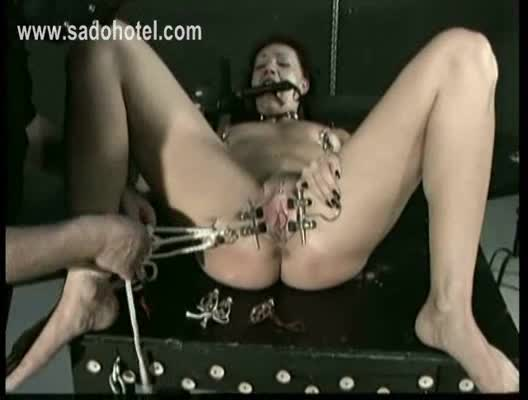 Consider, that Spread pussy with clamps theme