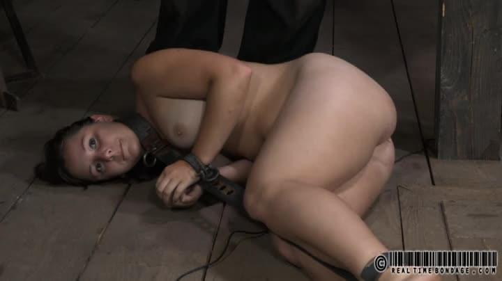 collared and ball gagged slut