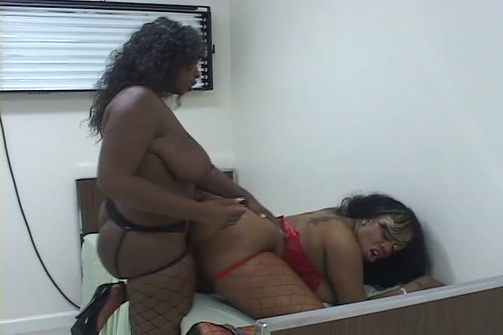 San jose bbw pretty hooker with huge boobs takes facial 9