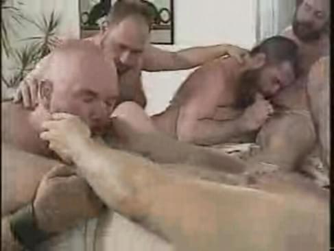 bear sex video