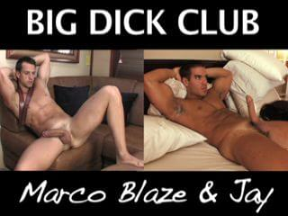 Large schlong just for us marco