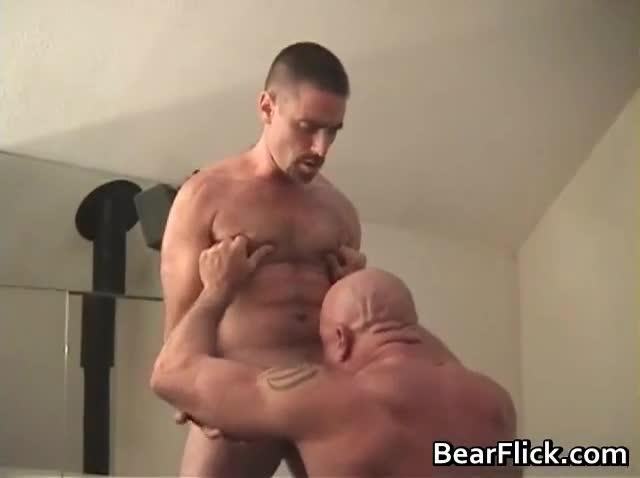 fuck gay Straight bear