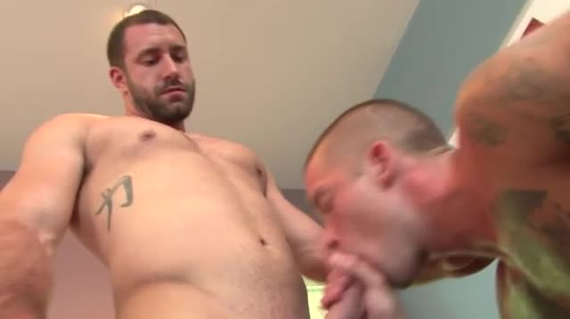 Gay blowjobs and cumshots