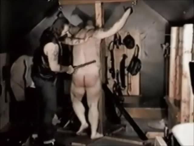 Femdom torture cartoons