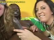 Interracial blowjob contest