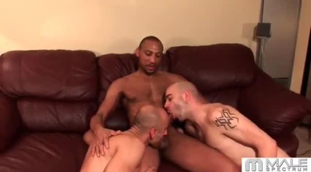 Interracial Casting Couch - Hardbody Black Girl Assfucked