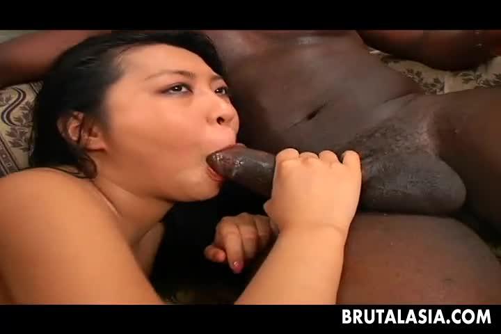 Live stream porn shemale luana sechuan