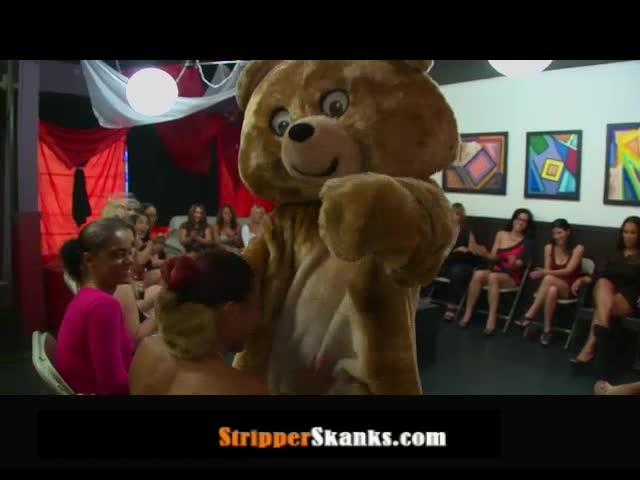 dancing bear tube